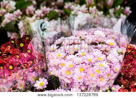 blossom flower in market  chiangmai  province Thailand.