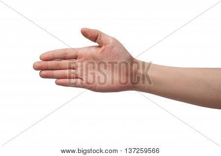 t hand holding visual check hand on white background.