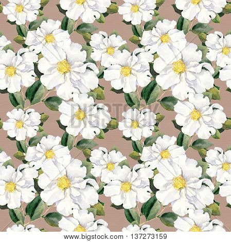 Foral pattern with white flowers magnolia. Watercolor
