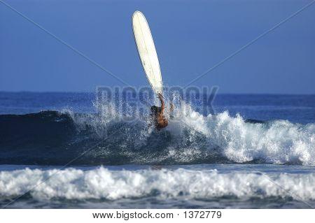 Sexy Surfer Girl