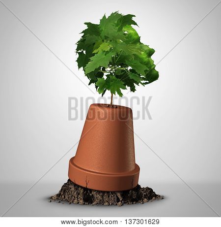 Human determination psychology concept and the power of perseverance as a sapling tree shaped as a head growig out of an upsidedown flower pot as a motivation symbol for recovery with 3D illustration elements.