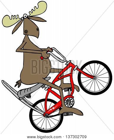 Illustration of a bull moose popping a wheelie on a red bicycle with extended handlebars and a banana seat.