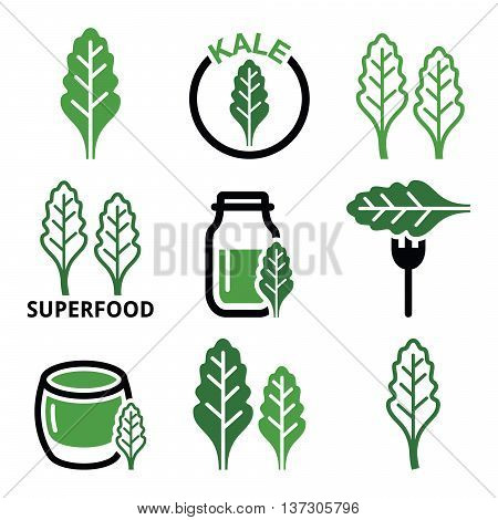 Superfood - kale leaves vector green icons set