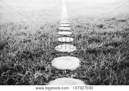 Vertical black and white forest path footway background