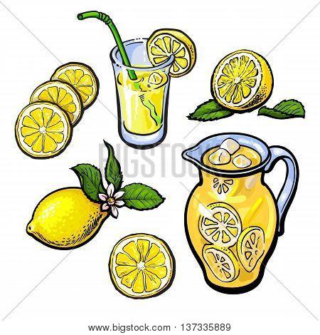 lemonade with lemon in a transparent jug, sketch hand-drawn illustration isolated on white background, cut the lemon juice and lemonade in a glass and fresh cold juice