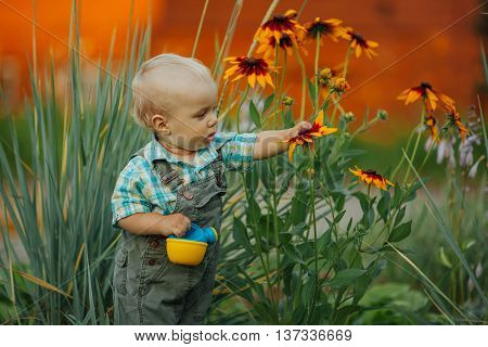 little boy with watering can check the quality of flowers