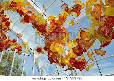 Large Chiluly glass exhibit inside large glass sunroom