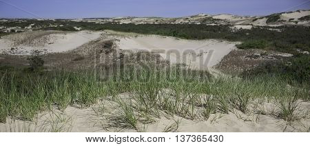 Protected dunes in the National Seashore at Provincetown, MA Cape Cod.