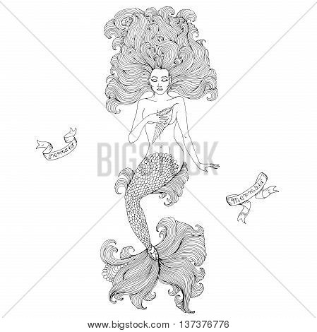 Vector hand drawn sea mermaid with long curly hair and a beautiful patterned scaly tail with wavy fins. Sexy mermaid hand presses seashell to the breast. Coloring page. Isolated on white background