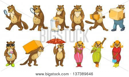 Set of funny beavers with magnifier, election box, cardboard boxes, cocktail, umbrella. Set with cheerful female beavers wearing dresses and shoes. Vector illustration isolated on white background.