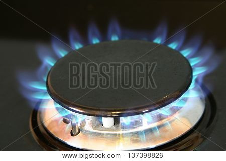 Natural gas hob heating ring on home cooker in kitchen.