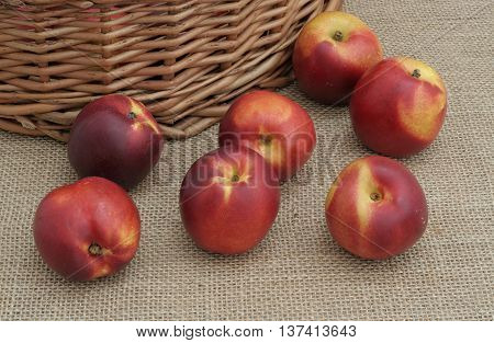 seven nectarines on canvas next to a basket