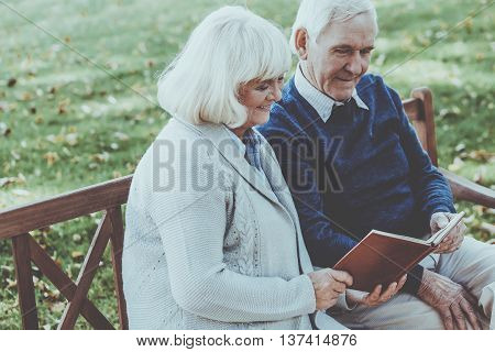 Enjoying time together. Cheerful senior couple reading a book together while sitting on the park bench
