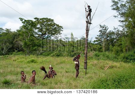 Warriors Of A Papuan Tribe