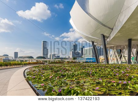 SINGAPORE SINGAPORE - FEBRUARY 17: Daytime view of the blooming lily pond before Art Science Museum building and Singapore skyline on the background on February 17 2016 in Singapore.