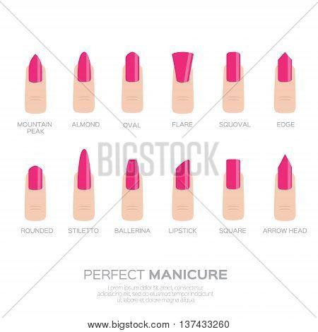 Different pink nail shapes. Woman fingers. Fingernails fashion trends. Vector design illustration