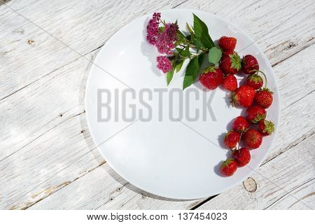 strawberries and flowers on white plate top view