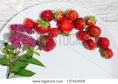 strawberries and flowers on white plate closeup