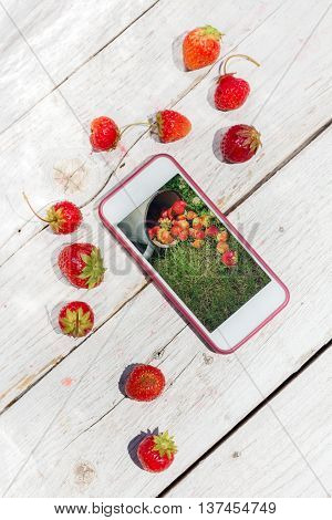 Cell phone and strawberries lying on white boards