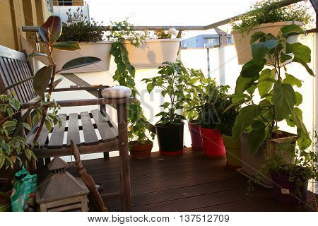 furniture and a small garden on the terrace