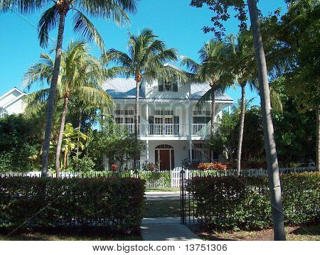 A florida house on the beach with palm trees surrounding it.