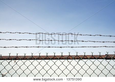 The top of a barb wire fence