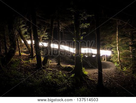 Flash of Light on The Appalachian Trail through the forest at night