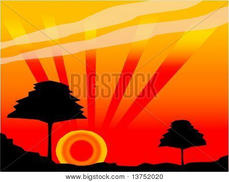 Silhouette of a couple of trees during a stunning sunset