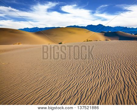 The small waves of yellow sand. Early morning  in a picturesque part of Death Valley, USA. Mesquite Flat Sand Dunes
