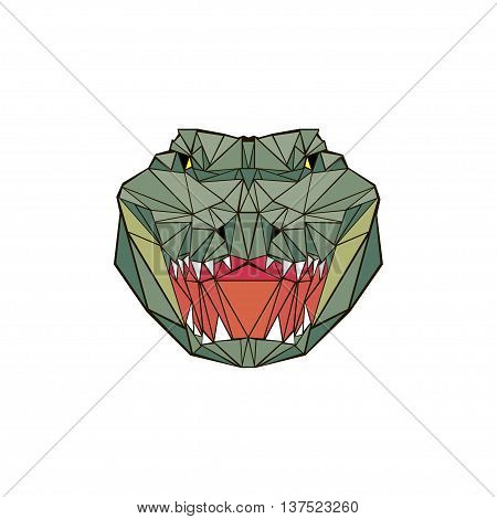 vector illustration abstract portrait of a alligator