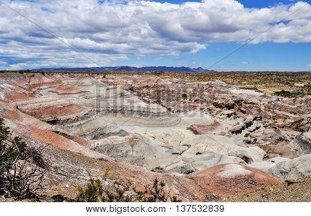 Valle De La Luna. Ischigualasto Provincial Park. Argentina