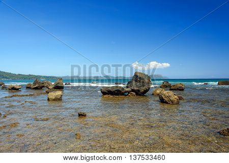 Stone On Black Sand Volcanic Beach