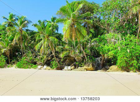 Sky Palms Park