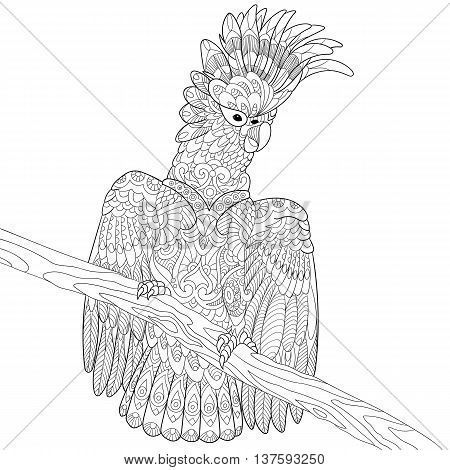 Zentangle stylized cartoon cockatoo parrot and wooden tree branch. Hand drawn sketch for adult antistress coloring page T-shirt emblem logo tattoo with doodle zentangle floral design elements.