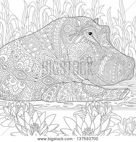 Zentangle stylized cartoon hippopotamus (hippo) swimming among lotus flowers and pond algae. Hand drawn sketch for adult antistress coloring book page with doodle zentangle floral design elements.