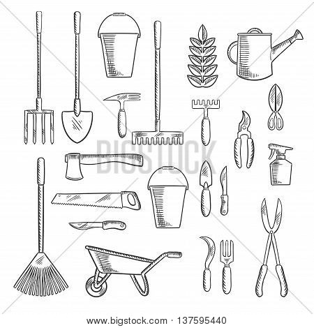 Watering can and plant with gardening hand tools sketches of rakes, shovel, axe and saw, spading fork, wheelbarrow and buckets, trowel, forks, knives and shears, pruners and sprayer