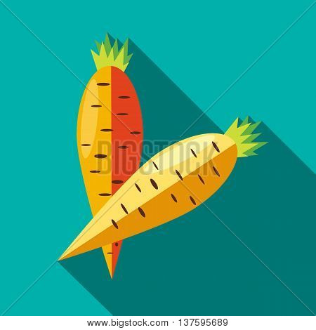 Two carrots icon in flat style on a turquoise background