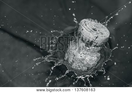 drops of water splashes from under the cork thrown into the water