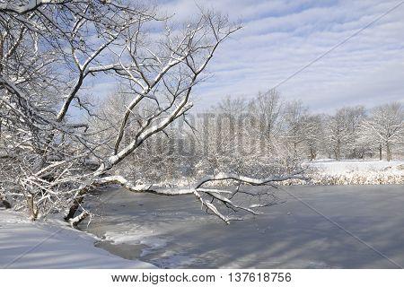 Snowy day in FDR park Philadelphia, PA.
