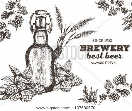 Vector illustration of beer. Raw material for brewing: branch of hops and bottle. Pub menu. Beer set.