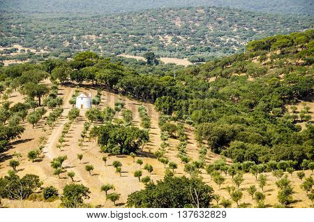 panorama of landscaped countryside with a traditional white house. alentejo. portugal