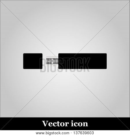 Vector isolated USB pen drives, black flash disk