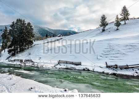 frozen river near the hillside with spruce trees in Carpathian rural area