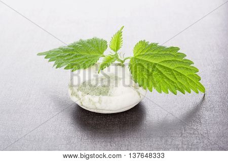 Stinging nettle cosmetics. Fresh nettle leaves and organic hard soap. Healthy natural cosmetics.
