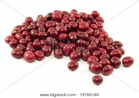 Organic Red Beans From Mexico