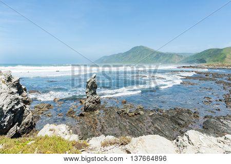 Coastal New Zealand rocky Manurewa Point Wairarapa.