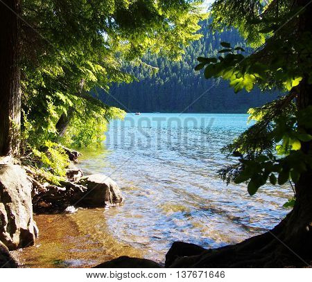Secluded cove on Lost Lake, lake view