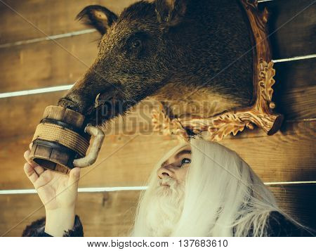 Old druid man with long silver hair and beard waters stuffed boar head with wooden mug on timber background