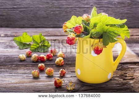 Sprigs northern cloudberry keep pace with red berries in a ceramic mug on a simple wooden background. Useful rare berries growing in the north