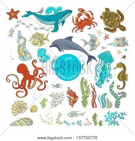 Ocean design elements isolated on white. Whale dolphin octopus turtle fish starfish crab shell jellyfish seahorse seaweed. Underwater sealife.